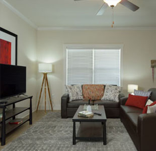 Cottage-Style Townhomes For Modern Student Living - Image 03